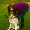 En pasjonert hundeeier